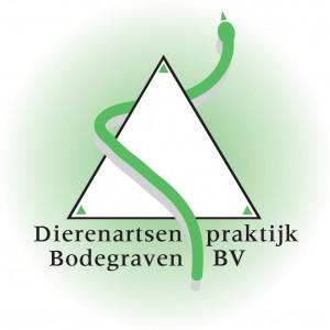 DAP Bodegraven BV logo pms-p1aflkmp3vck81o8c1ci2qdaf1n