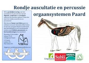 19-12-2016-ausultatie-percussie-workshop